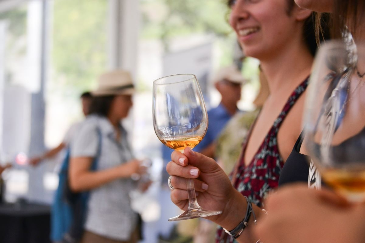 Vinhos a descobrir na 3ª edição do Wine Market