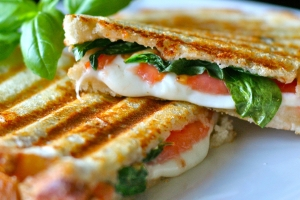 Panini de aveia low carb