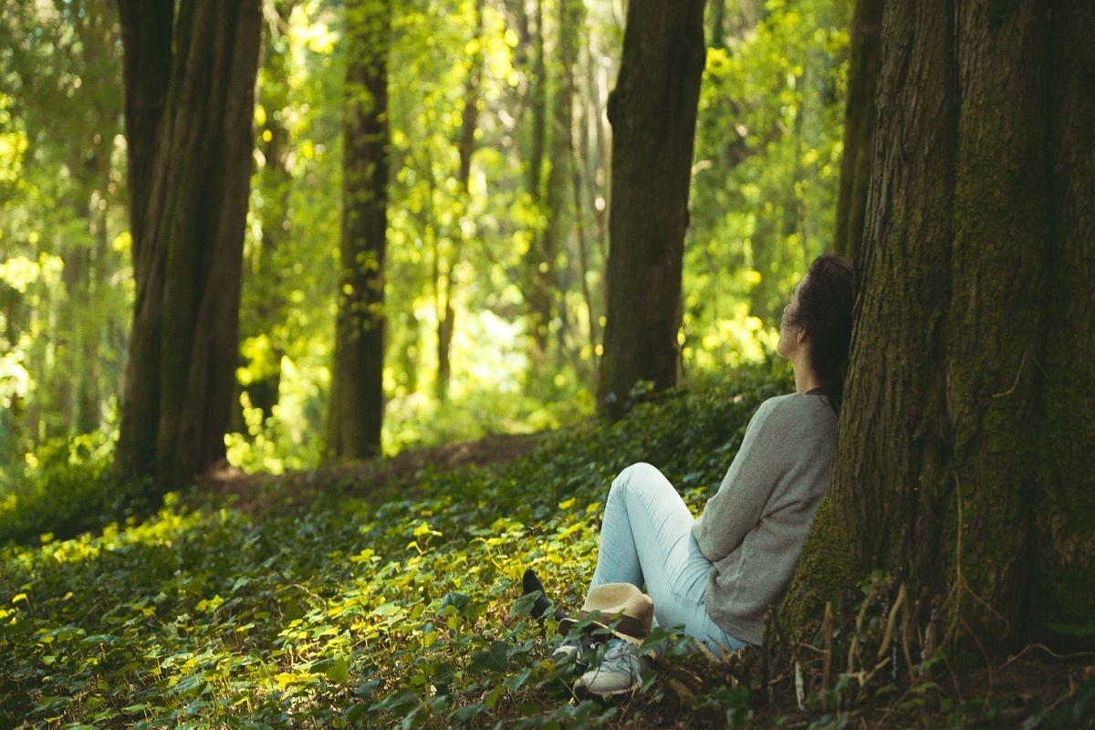 Renature: a primeira empresa em Portugal de Forest Therapy