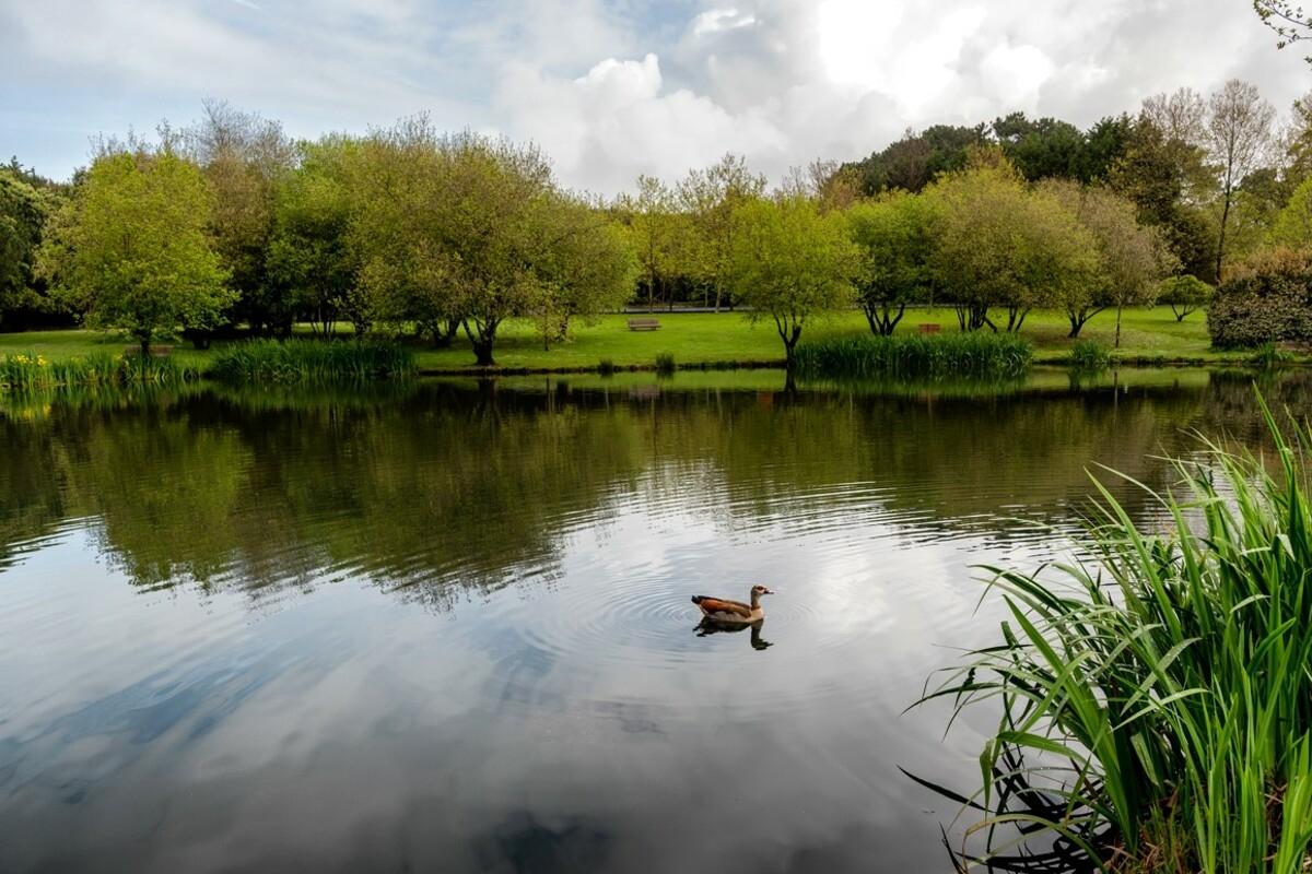 Parque da Cidade do Porto entre os 5 melhores do mundo