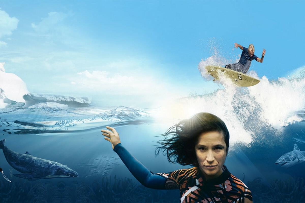 Mergulhe pelos oceanos da Terra com a 'Ocean Film Tour'